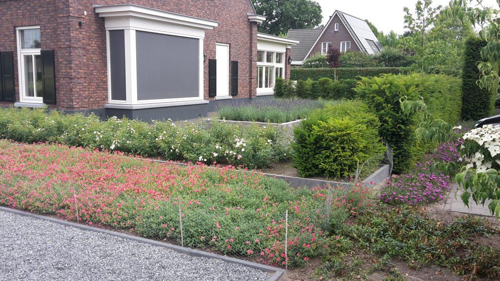 Tuinontwerp tuinaanleg borders beplanting voortuin